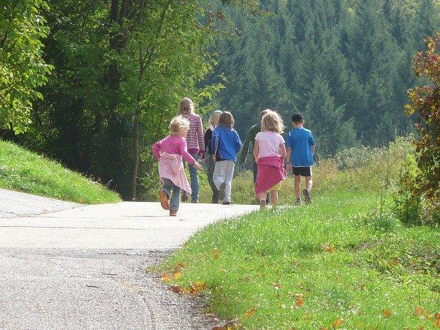procházka u lesa